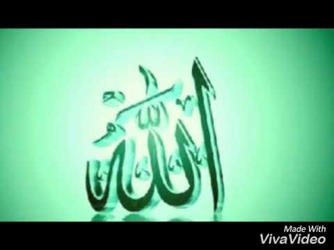Islama aid sekiller