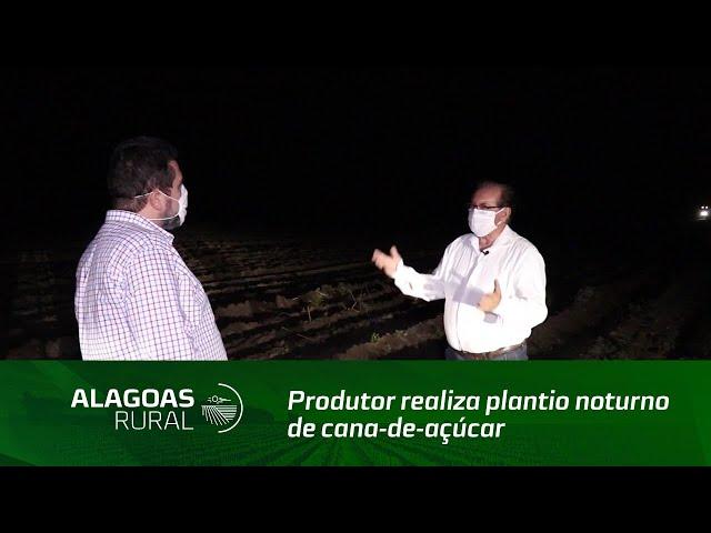Produtor realiza plantio noturno de cana-de-açúcar