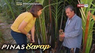 Pinas Sarap: Kara David, susubukang gumawa ng sukang Paombong!