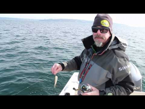 Learn How To Mooch For Salmon With Capt. Keith Robbins