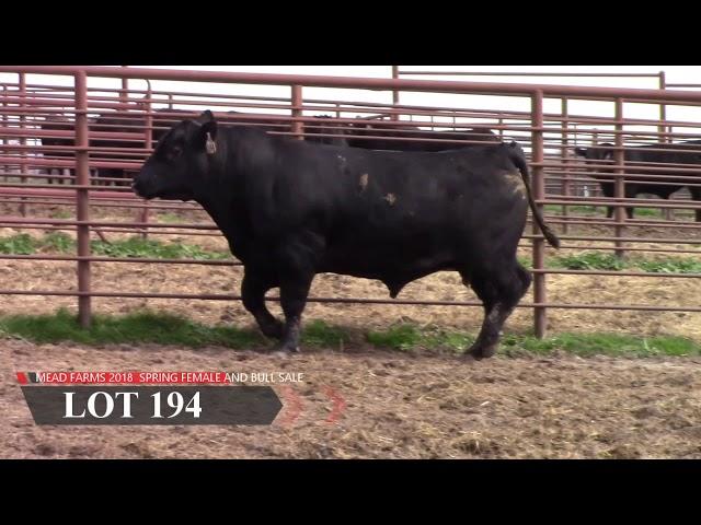 Mead Farms Lot 194