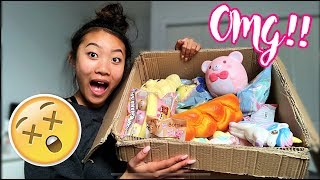 HUGE SQUISHY PACKAGE!! Bunny'sCafe Package