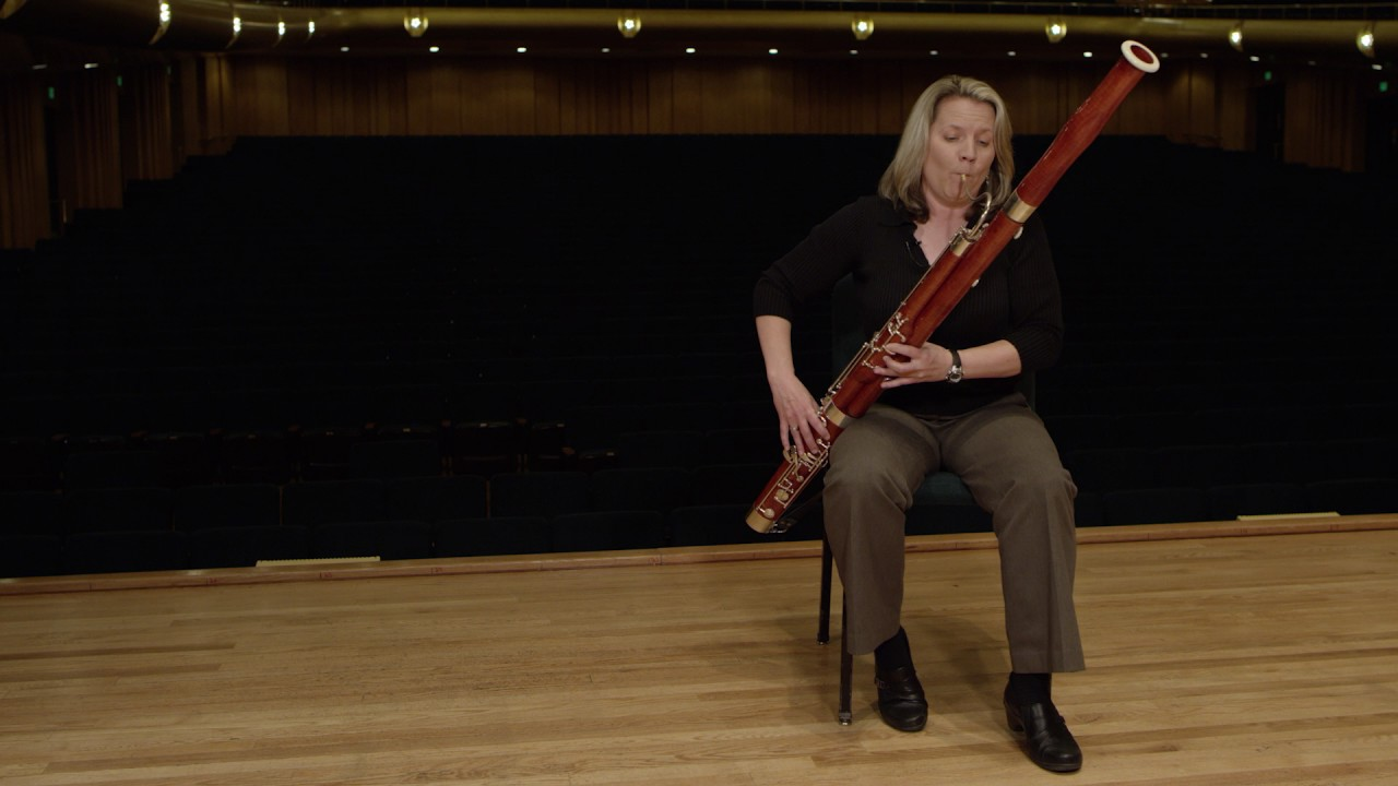 what does a bassoon sound like ode to joy youtube