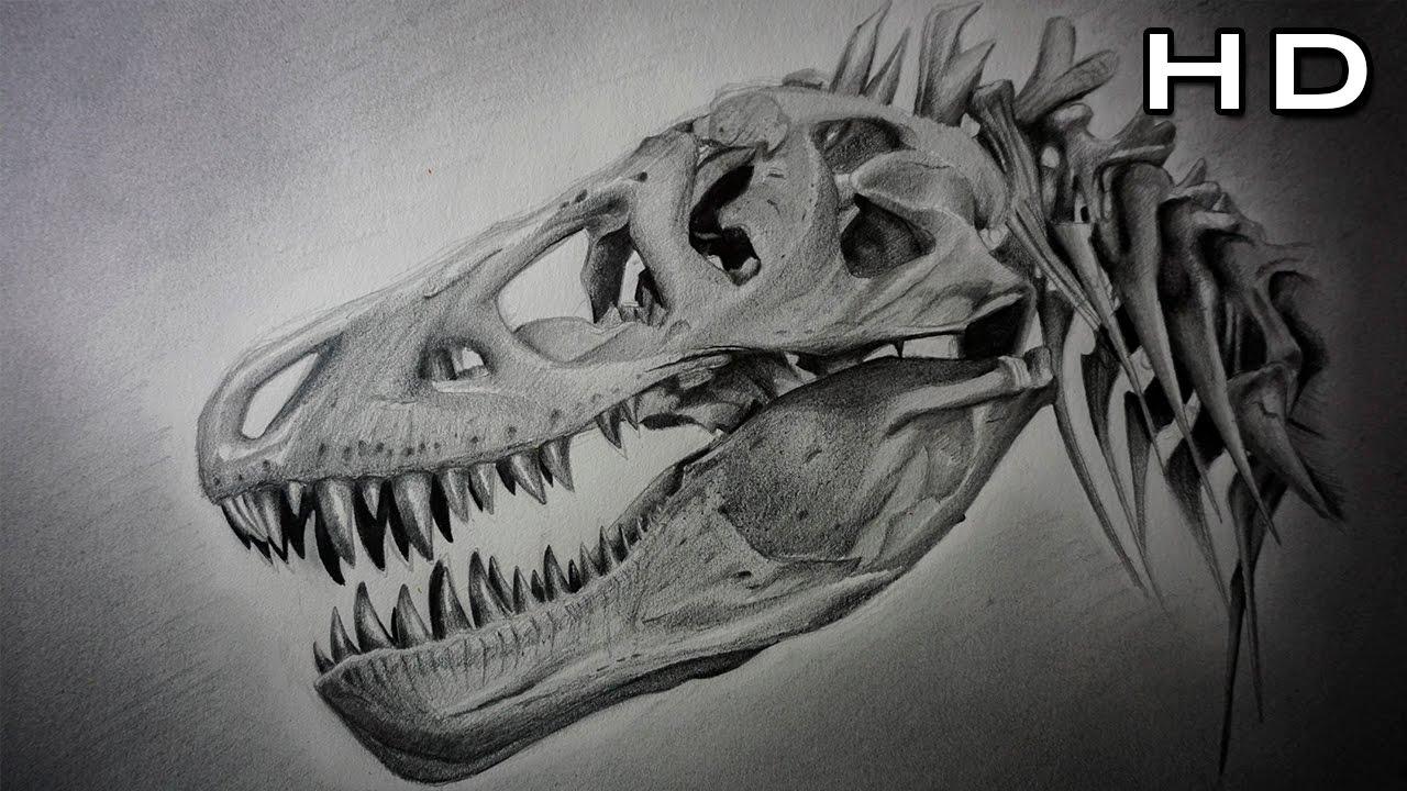 Cómo Dibujar Un Cráneo De Tiranosaurio Rex Paso A Paso