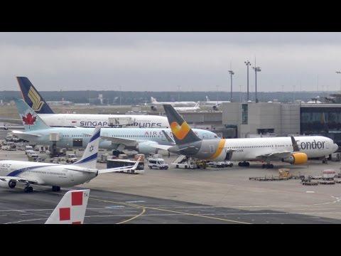 [4K] Plane Spotting at Frankfurt Airport | B747, B777, B787, A340, A380, MD-11