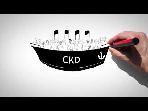Doctor Kidney: What is chronic kidney disease (CKD)?