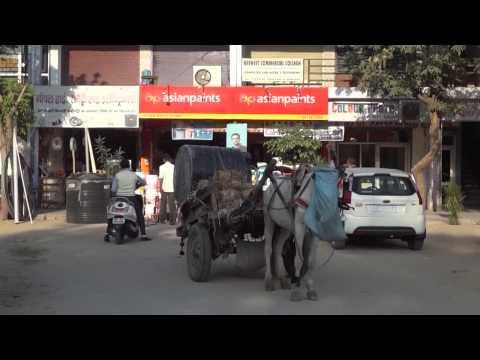 Жизнь в Индии #1: Ох, уж эта Индия, или бытие определяет сознание. Приветствуем город Мирут.
