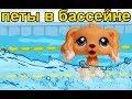 ДОМ ЛПС #9 ПЕТШОПЫ В БАССЕЙНЕ