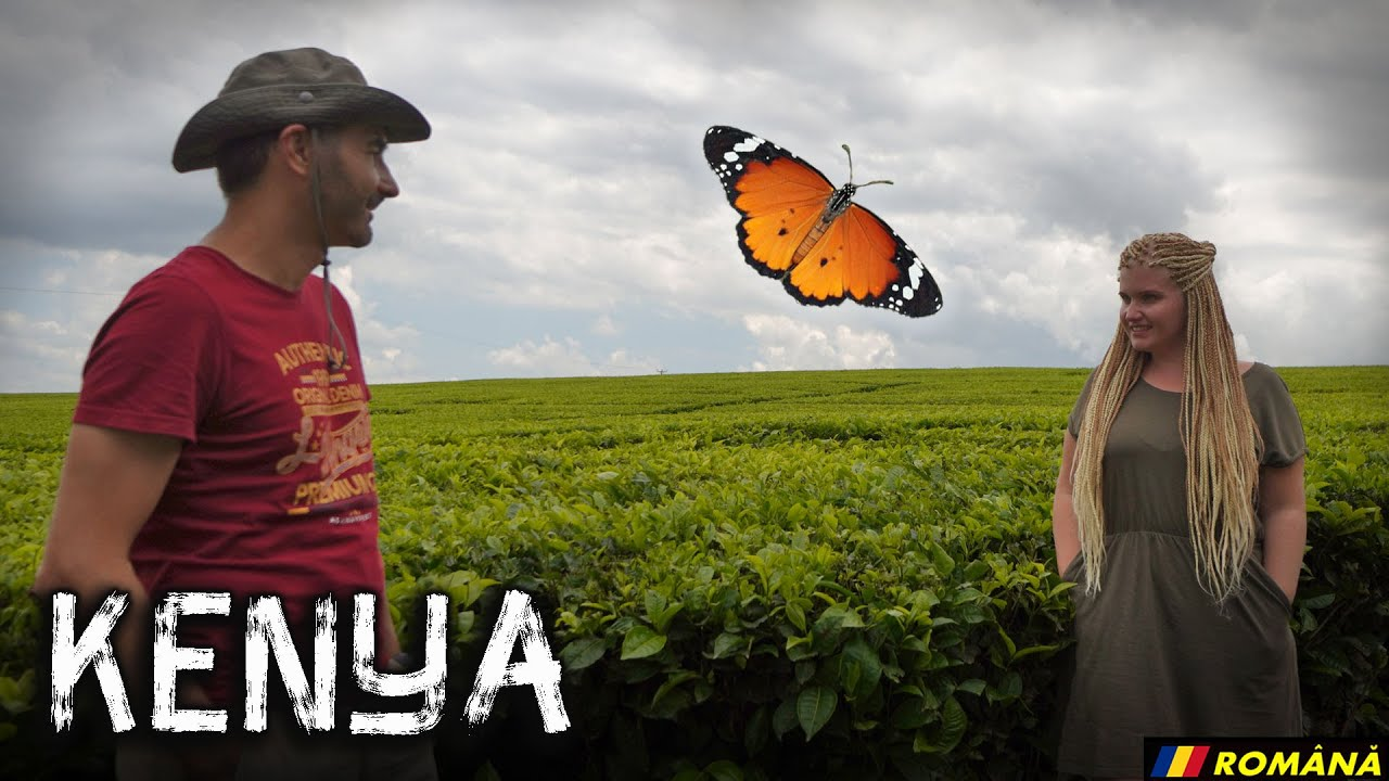 🇰🇪06 |  A făcut MALARIE! (jungla Kakamega, povestea ceaiului, Kenya vlog)