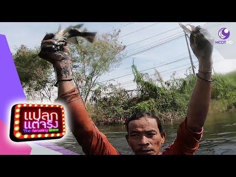 คนใบ้จับปลามือเปล่า จ.ฉะเชิงเทรา - วันที่ 05 Jan 2019