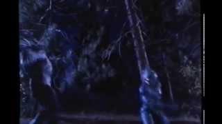 Guyver Dark Hero   Bear Attack