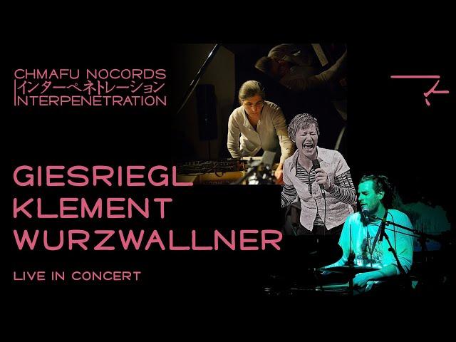 Giesriegl / Klement / Wurzwallner @ Interpenetration 1.8.2