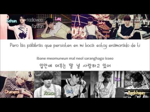 EXO - Tender Love (Korean Version) [ Sub Español /Romanizacion/Hangul] (Color Coded)