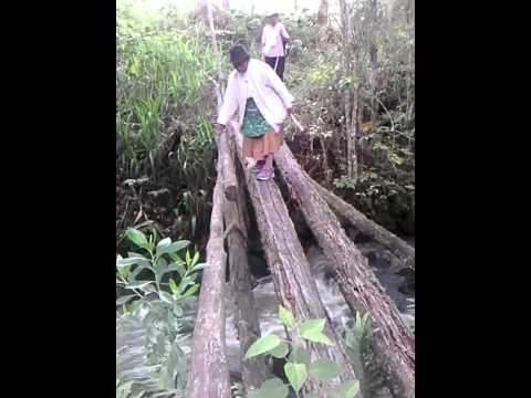 Abuelita de 87 años pasa puente de madera