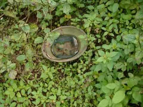 Vietnam 2008 #4 DMZ Firebases