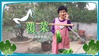 芥菜曬成乾竟然那麼好吃! 阿貓姐王金櫻家傳的超簡單覆菜(福菜)作法