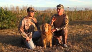 Duck Hunting with Buck  Man's Best Frame
