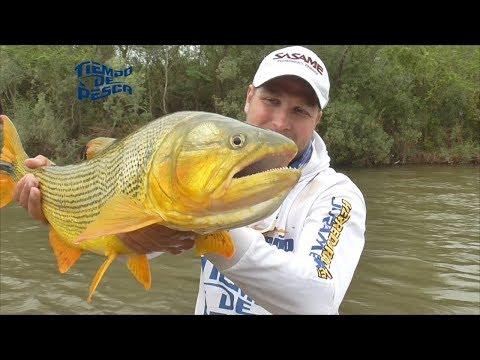 Pesca en el Río Juramento (Salta)