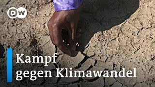 Mali: Ein Bürgermeister kämpft gegen die Wüste | Global Ideas