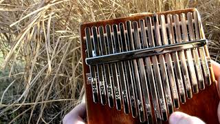 avatar-s love kalimba cover
