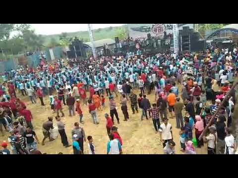 Palapa tawuran live wbc