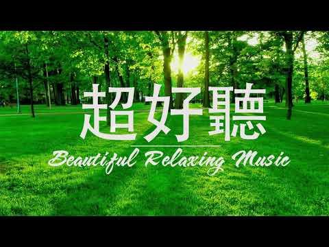 非常好聽👍👍週末最好聽的50首純鋼琴輕音樂 放鬆解壓 -轻松的钢琴音乐 - 純鋼琴輕音樂-美妙的音樂 Relaxing Piano Music