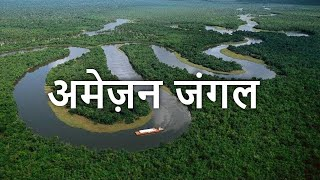 Top 10 DEADLIEST Animals Of The Amazon Forest | अमेज़न जंगल के 10 सबसे खतरनाक जानवर