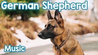 Music for German Shepherds! Relax Your Anxious or Hyperactive Germa...