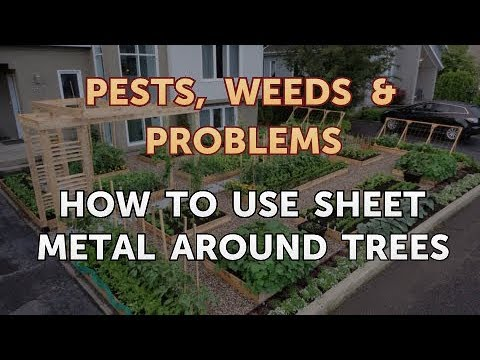 How to Use Sheet Metal Around Trees