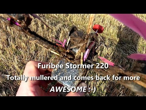 Furibee Stormer 220 FPV Racing Drone Quad review