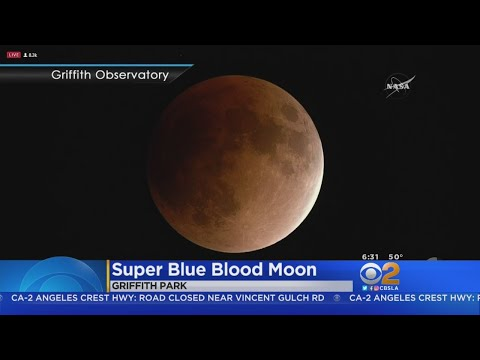 Skywatchers Camp Out At Griffith Observatory For Super Blue Blood Moon Eclipse