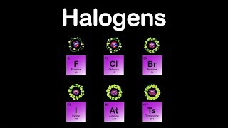 Halogens/Halogens Group/Halogens Periodic Table
