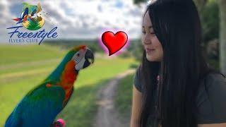 why-girls-love-birds