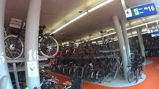 Bike Parking Haarlem Railway Station