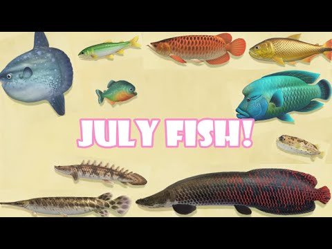 All The Fish You Can Catch In JULY | Animal Crossing New Horizons | Northern Hemisphere | KawaiiBeth