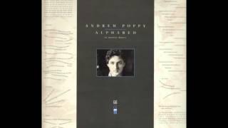 Andrew Poppy: Goodbye Mr. G