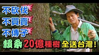 散盡家產種樹送台灣.賴桑的大雪山種樹人生 @一步一腳印 發現新台灣