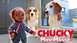 Little Evil Chucky vs Funny Beagles PRANK :  Mini Movie