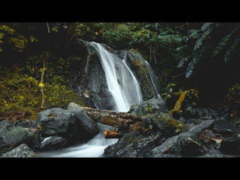 Secrets of North Trinidad - New Vlog Segment!