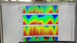 Weakening of Cold Halocline Layer in Arctic Exposes Sea Ice to Oceanic Heat in Eastern Arctic Ocean