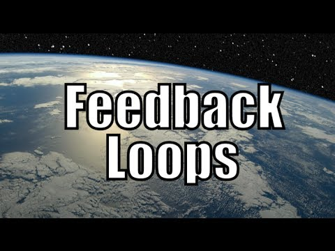 The Basics of Climate Feedback Loops