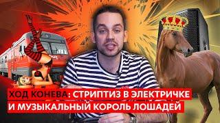 Стриптиз в электричке и музыкальный король лошадей (Ход Конева №18)
