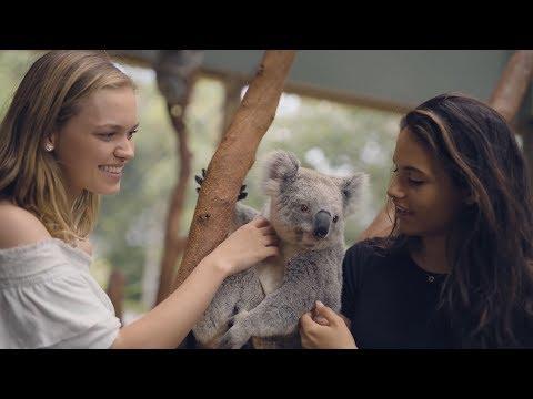 Best Animal Experience In Australia