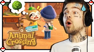 Wie lost kann man sein? 🌳 | Animal Crossing #12 | Taddl