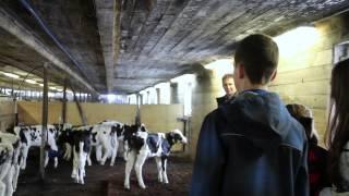 La vie à la ferme