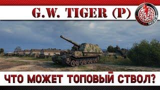 G.W.Tiger (P): ЧТО МОЖЕТ ТОПОВЫЙ СТВОЛ?