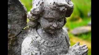 I Just Take Pictures - Stone Angels