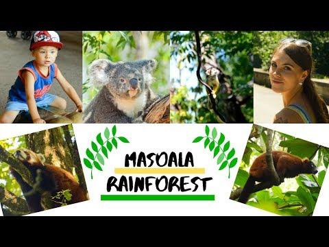 Masoala Rainforest AlessiaFam I FamilyVlogdeutsch