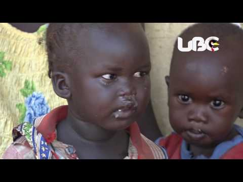 Food Crisis; Government struggles to feed refugees, Cash distribution criticized