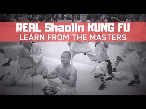 Cool Shaolin Kung Fu